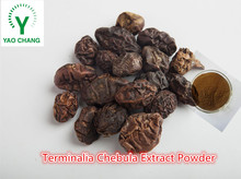 Natural Herb Medicine Terminalia Fruit Extract Powder / Terminalia Chebu for sale with celastrol /tripterine 98% in bulk Extract