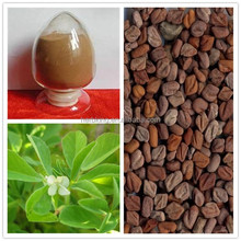 The top Quality Fenugreek seed extract Furostanol saponins