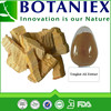 Natural cheap price high quality tongkat ali extract