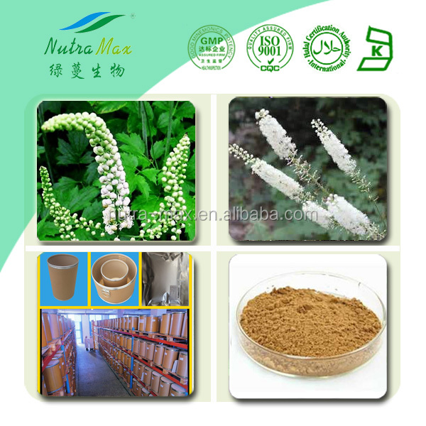 100% Nature Black cohosh root powder/natural black cohosh extract/black cohosh P.E