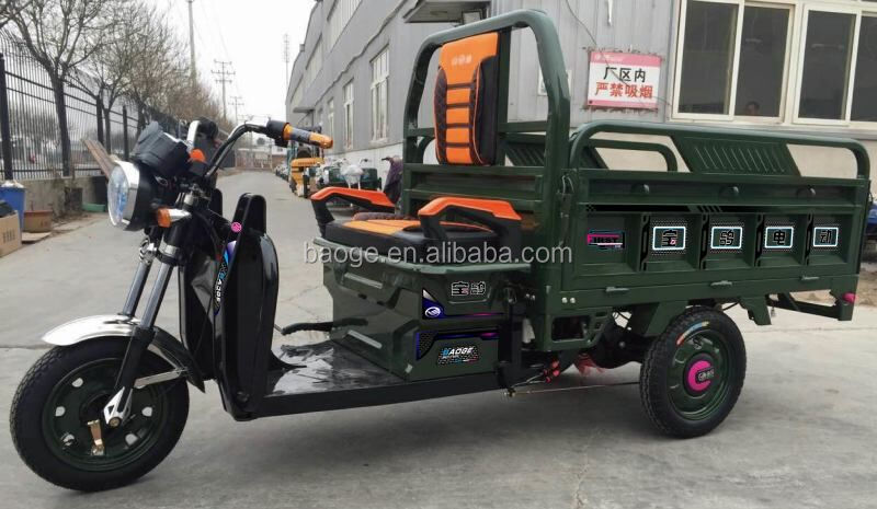 Cheap enclosed adult Electric tricycles/electric rickshaw