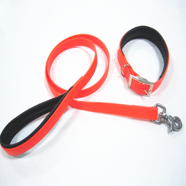 pvc leash and collar.jpg