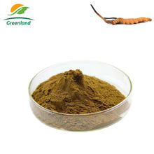 Greenland 100% Natural Chinese Herbal Plant Cordyceps sinensis Worm Grass Extract Powder