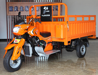 hot sale cheap price single cylinder four strke 3 wheel motor cargo tricycle for sale in Peru
