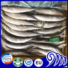 frozen seafood pacific saury for sale