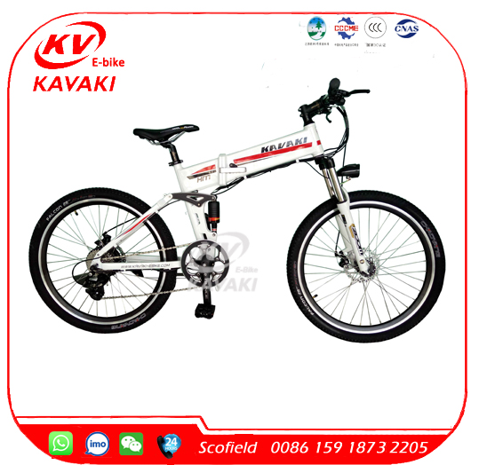Mountain Exercise Electric Bike Folding Fat Tyre Beach Electric Bike/Bricycle /Ebike