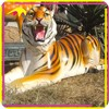 /product-detail/kano9132-large-fiberglass-molds-wild-animal-tiger-statue-60512098879.html