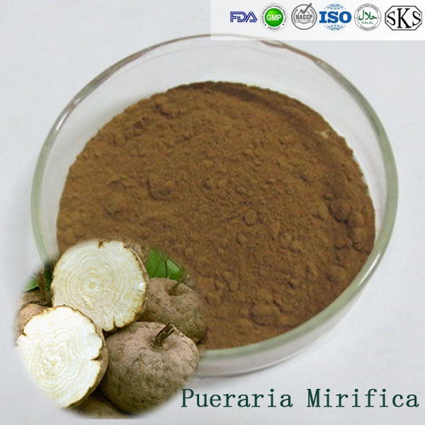 Anti-wrinkle Natural Food grade White Kwao Krua extract / Pueraria Mirifica root Extract with 40%Isoflavones powder