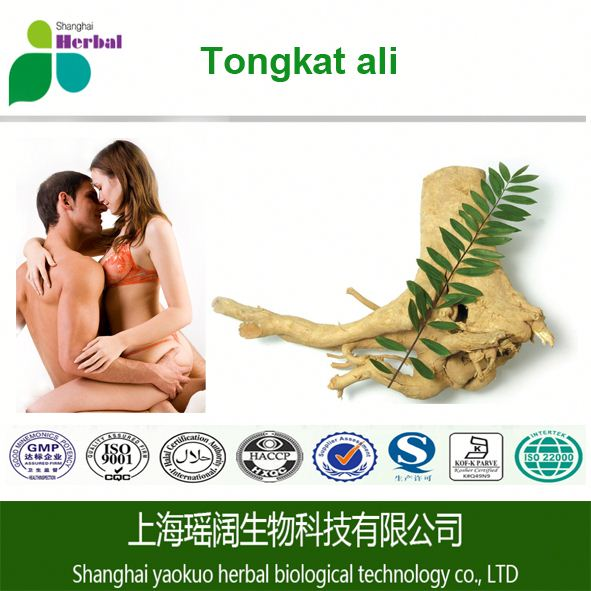 TOP grade 200:1 tongkat ali /free sample tongkat ali extract powder/tongkat ali root