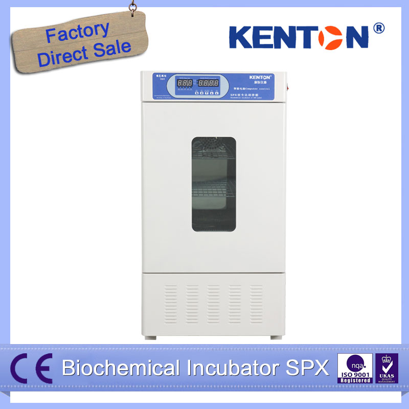 Digital Biochemical SPX Laboratory China Incubator Machine Price