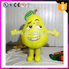 Event decoration replica model pear giant inflatable fruit