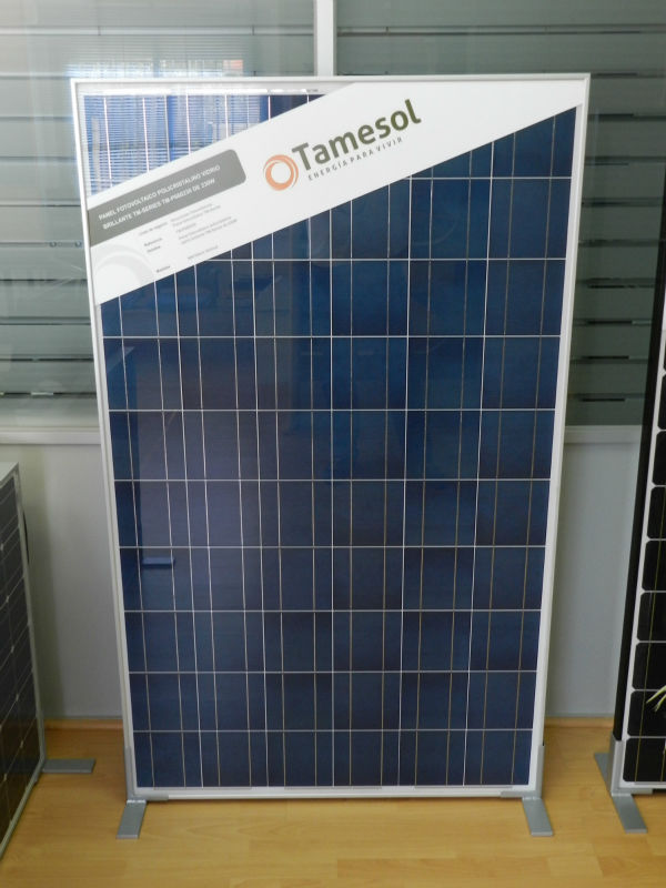 Photovoltaic module TM Series 300W POLY