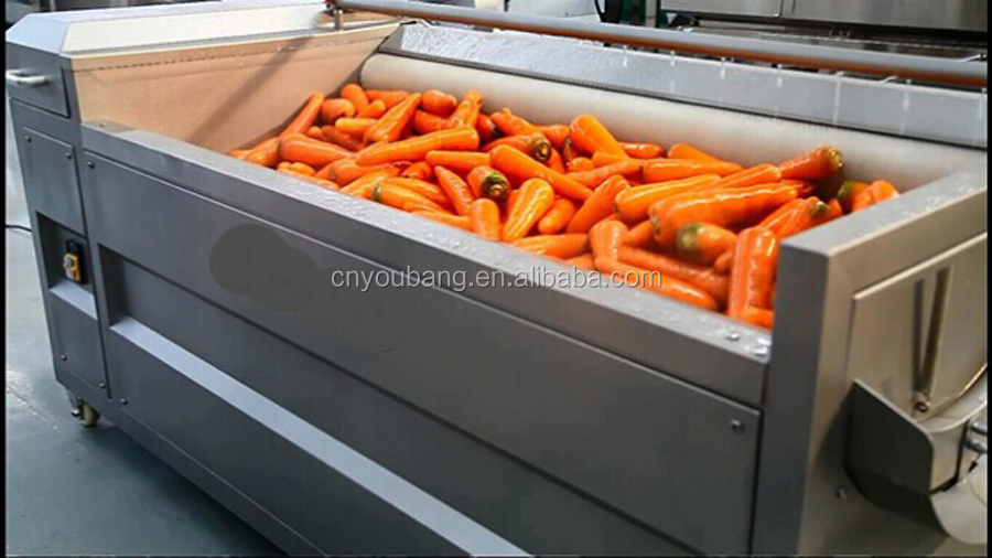 Brush type potato / carrot cleaning machine with peeling function