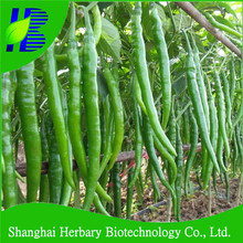 2018 Hot sale FY NO.3 long and thin chili seeds
