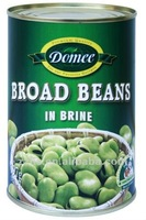 Canned broad beans foul medames fava bean
