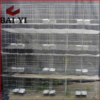 PVC Coated Rabbit Farming Crates/Kennels/Houses With High Quality And Competitive Price