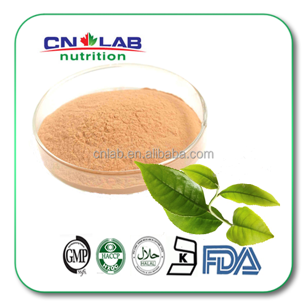 Natural Cosmetics Raw Material EGCG Powder 95% Green Tea Extract