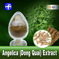 Superior angelica root dong quai sinensis ligustilide root extract powder