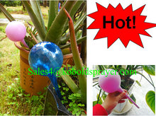 Plastic automatic water globe/Plastic plant watering ball