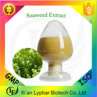Hot Sale & Top Quality Seaweed Extract Powder