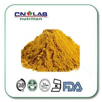 factory supply Organic Turmeric White Curcumin Powder,Curcumin Pharmaceutical