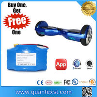 Good Price High Quanlity Hoverboard Accessories 36V Battery for E Scooter with Special Gift