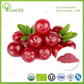 ISO certified freeze dried cranberry powder