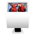 43 inch indoor beautful windows touch screen lcd monitor touch screen