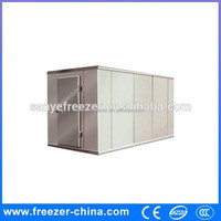 China Sanye Refrigeration Equipment cold storage container