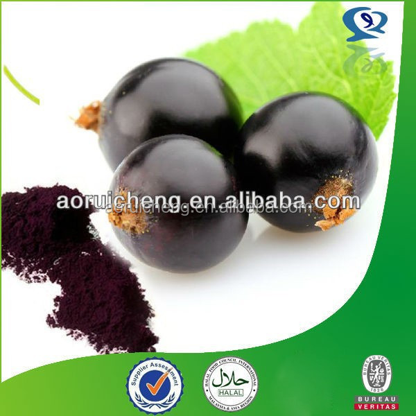 Natural Pure black currant extract, black currant extract powder, organic black currant