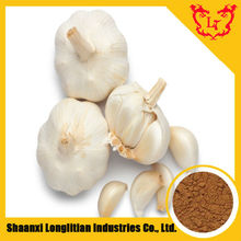 Allicin 0.5%-2% / Extract Garlic Product