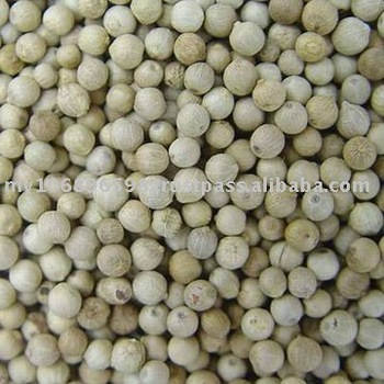 White peppercorns buy