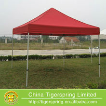 Customized 10x10 ez up canopy tent for sale