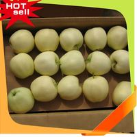 Professional Fruit Supplier fresh fruits and vegetables from dubai