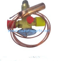 Thermo Expansion Valve