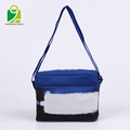 Promotional bottle cooler bag cooler lunch box bag