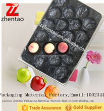 Fruit Packaging Vacuum Forming Plastic Blister Tray