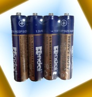 R03P AAA heavy duty battery with MSDS