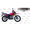 Cheap price sports motorbike SF250GY-3A with 250cc engine