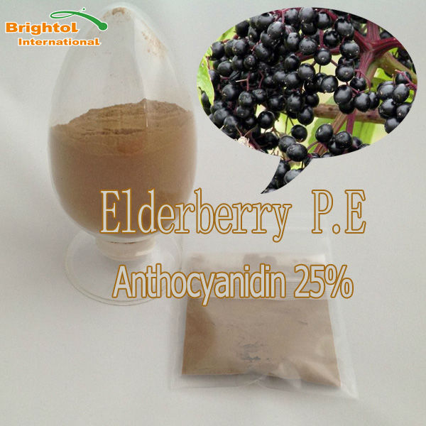 Pure natural elderberry P.E. with free sample in 2014