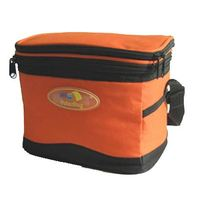 Zippered Closure 2 Separate Insulated Compartments Tote Lunch Box Cooler Bag