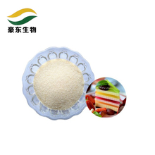 China suppliers food addictives beef flavore gelatin