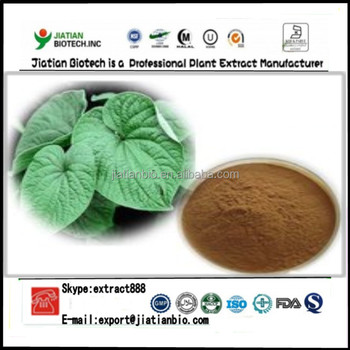 High quality Piper Methysticum Extract Powder