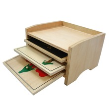 Hot sale educational equipment for montessori wooden botany puzzle cabinet