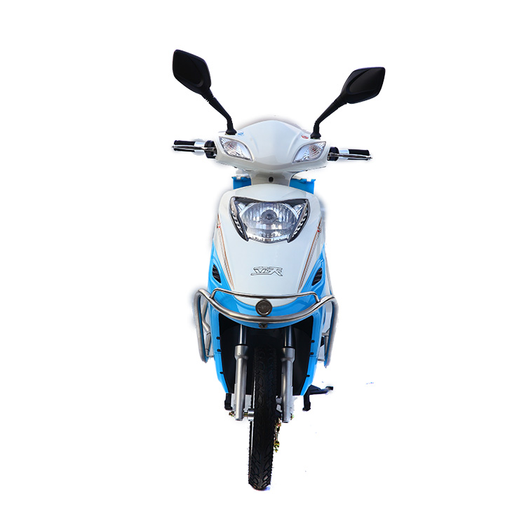 Hot Sale Cheap 600W800W Electric Motorcycle Sidecar