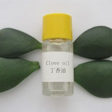 best quality from factory clove oil