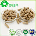 health care capsule high quality aweto cordyceps sinensis powder capsule
