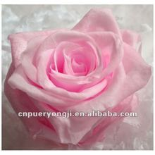 2012 best selling handmade preserved flowers