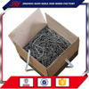 Round Iron Polish Common Nails With Factory Price China goood quality