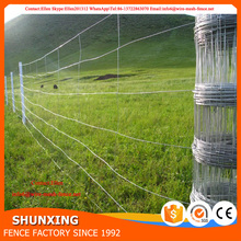 Cheap Cattle Field Fencing For Sale